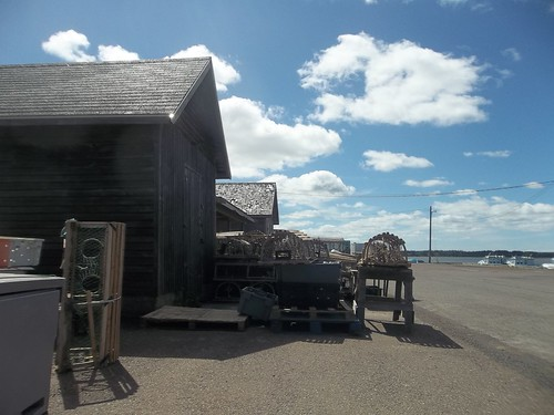 The sheds and shacks of Covehead (1)