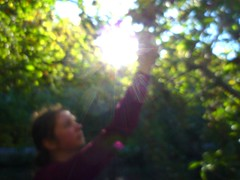 apple pickin' 1