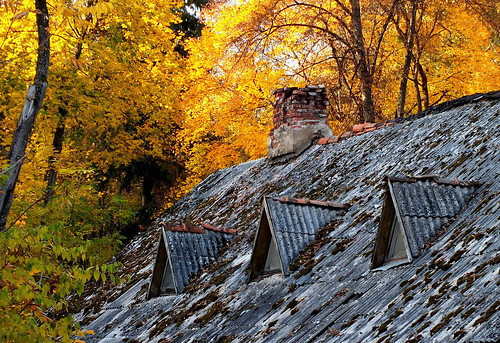 autumn roof abandoned window leaves yellow fire maple october fuji lithuania ruduo lietuva kaminas birstonas stogas lapai klevas spalis flickraward limajulija bestcapturesaoi finepixhs30exr