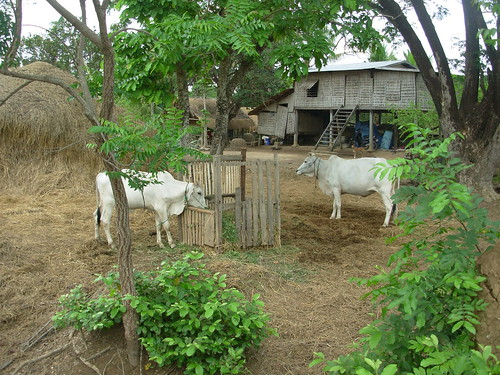 Battambang-Wat Ek (40)
