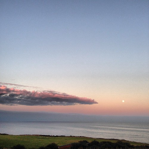 This. #blog #blogger #blogging ©http://laurasdiatribe.blogspot.co.uk #view #sea #pinksky #pinkskyatnight #trees #countryside #clouds #moon