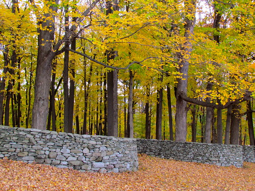 "Andy Goldsworthy ""Storm King Wall"""