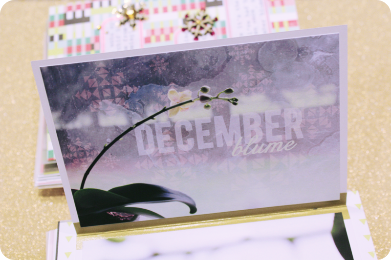 {dec 11th} christmas countdown mini | photo overlay