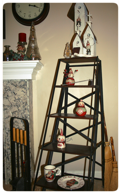 Martha's-Photo-Johanna-Parker-Collection-Ladder-Shelf
