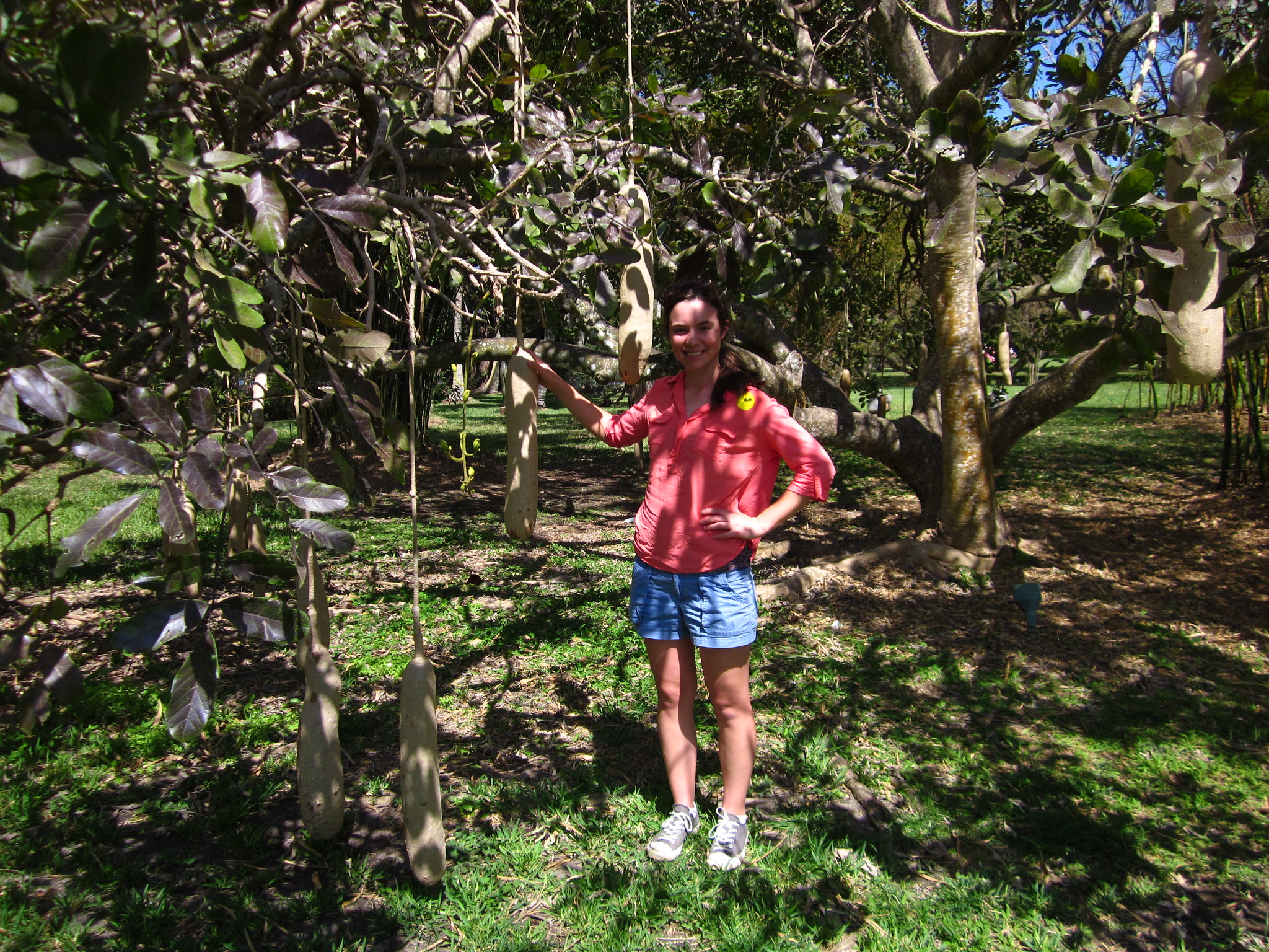 Amanda Plante\'s Garden Guide: Baby it\'s Hot Outside, at the ...