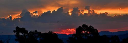 sunset sky clouds australia canberra aus act australiancapitalterritory canberranaturepark