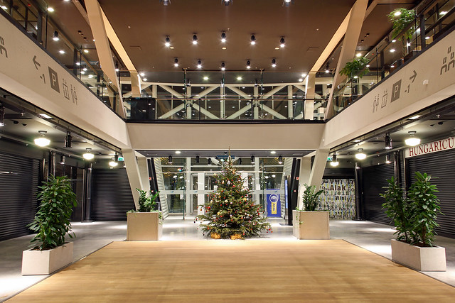 Budapest - Christmas tree in the Balna building in 2013 dec.
