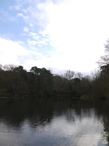 Keston Common Lakes