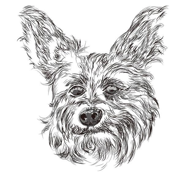 the dog head vector illustrationDog Head Vector