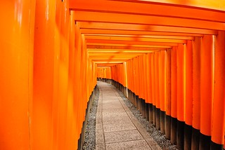 Torii corridor of Fushimi Inari-taisha Shinto Shrine No.1.
