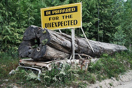 Logs have Right of Way in Holberg, North Vancouver Island, British Columbia, Canada