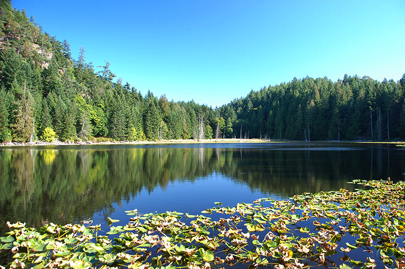 Roe Lake in Roesland, North Pender Island, Gulf Islands National Park, British Columbia, Canada