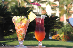 Grand Velas - Riviera Nayarit - Shrimp C...