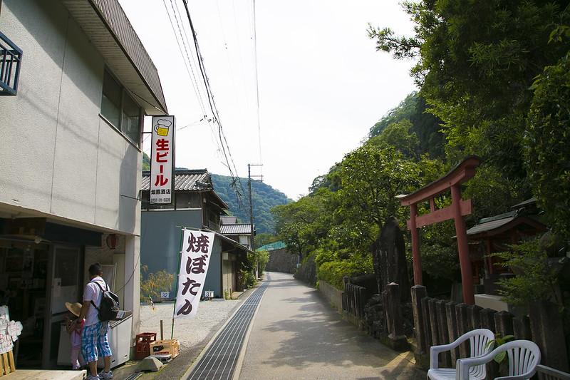 武庫川渓谷廃線ハイキング(生瀬ー武田尾)628