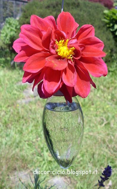 lampadine fiorite 6