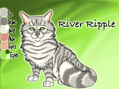 River Ripple of RiverClan Reference Sheet by Jayfrost