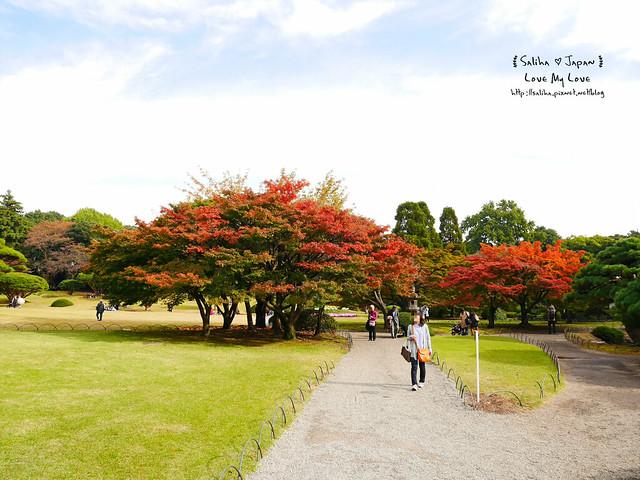 日本東京自由行新宿御苑庭園景點 (34)