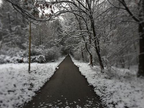 slovakia zilina university erasmus winteriscoming unizask uniza veľký diel žilina