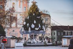 Kaunas Christmas Tree 2016 #341/365