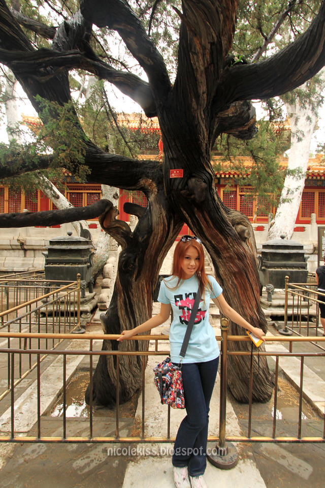 Nicolekiss at Imperial Garden, Forbidden City, Beijing