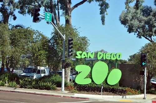 San Diego Zoo #13
