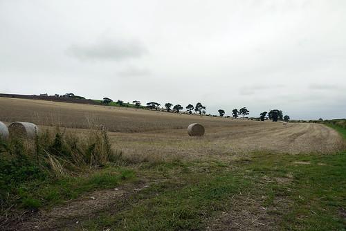 Fields at Flodden
