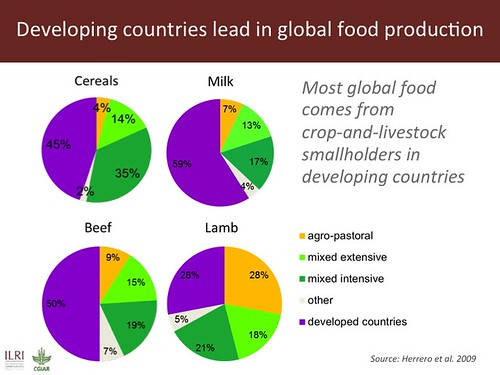 Slide 4: Developing countries lead in global food production