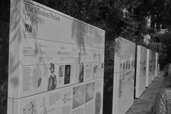 San Antonio - The Alamo history