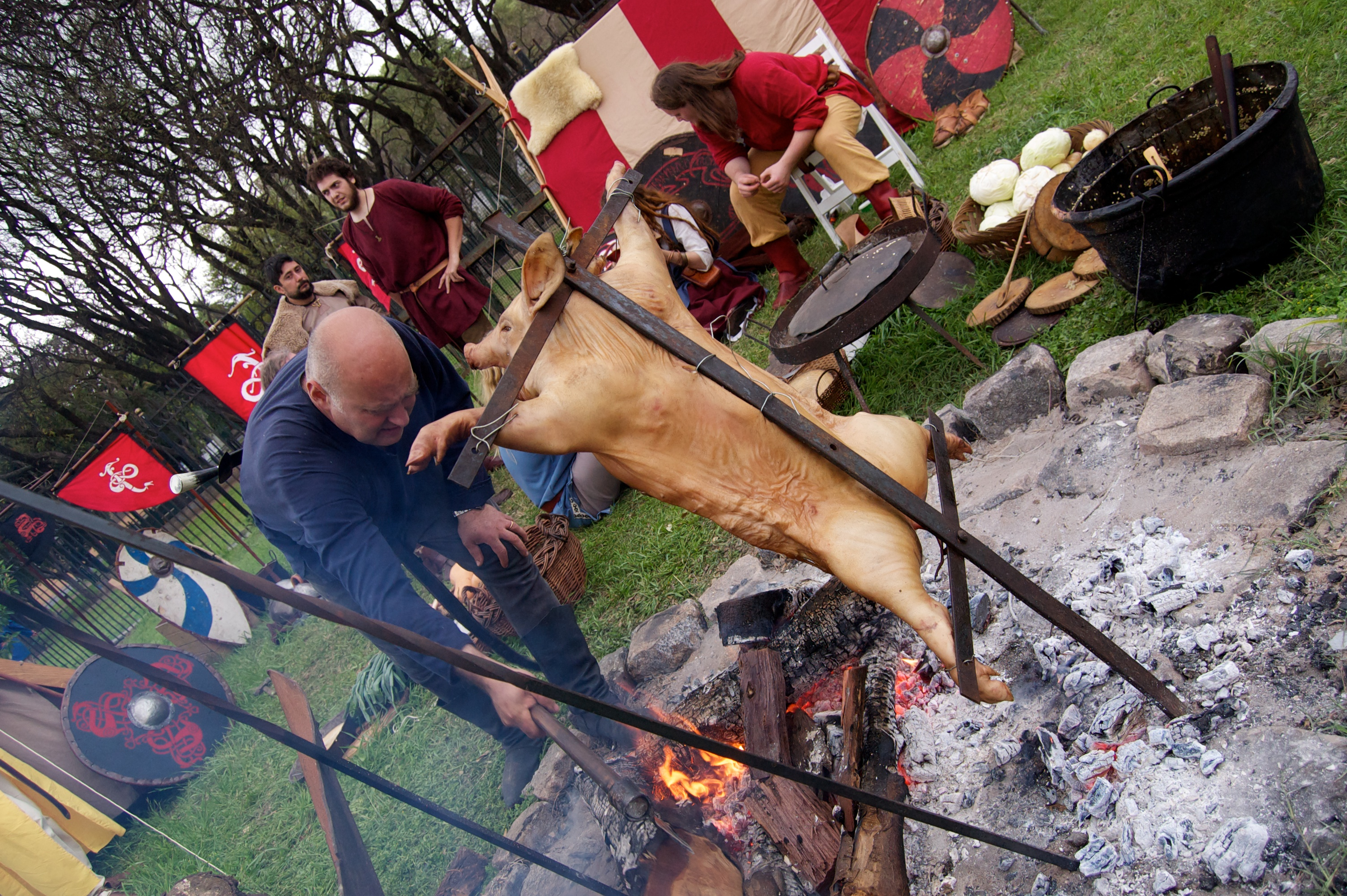 A pig on cross slowly cooks over the open pit fire at the Medieval Festival.