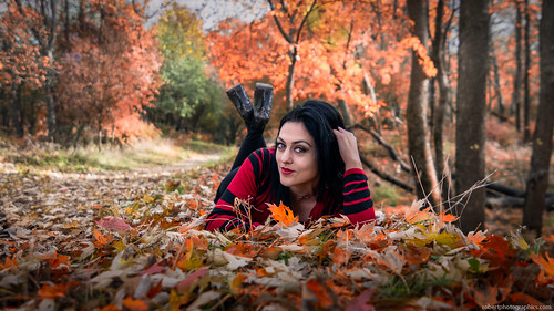 Fall shoot