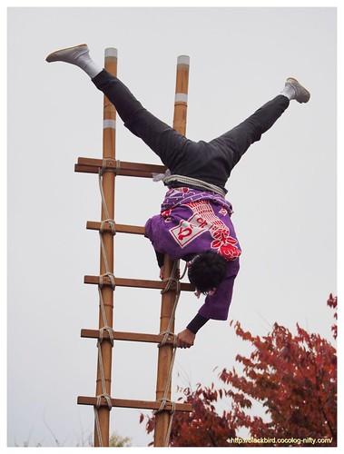 Ladder ride #01