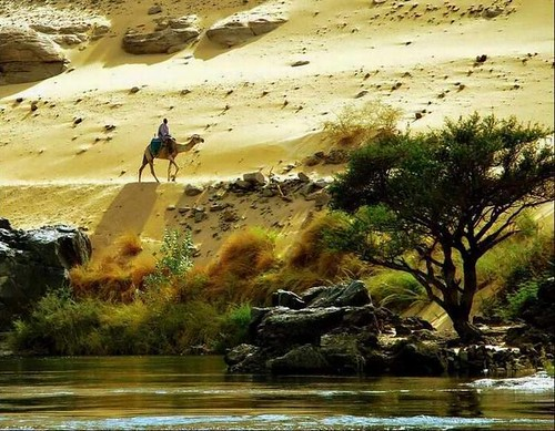 Gharb Sogeil – Aswan