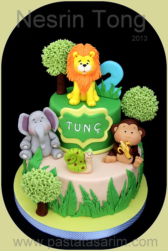 animals 2nd.birthday cake
