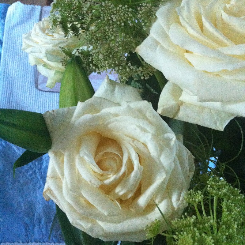 chambray and curls white roses