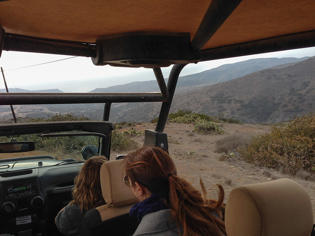 Catalina Island Conservancy Jeep Eco Tour