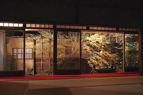 【写真】2013 紅葉 : 天授庵/2020-05-17/IMGP3724