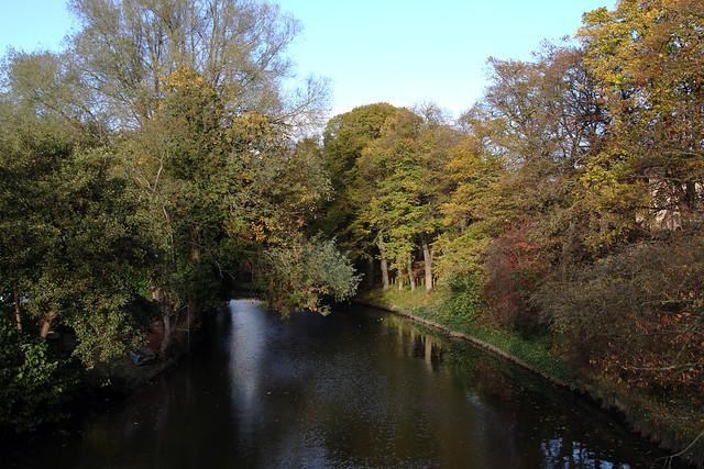Norwich 5