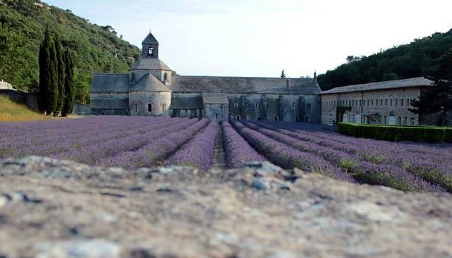 Gordes - Lavandas - abadia
