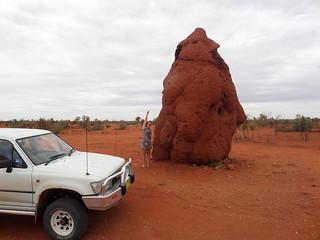 Riesiger Termitenhügel