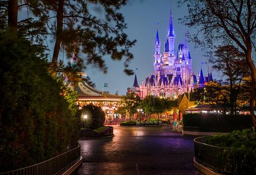 Cinderella Castle Through The Trees