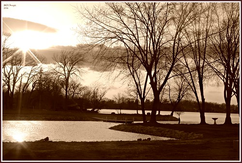 trees sunset sun lake water wisconsin canon lakeside waterscene foxlake picmonkey:app=editor
