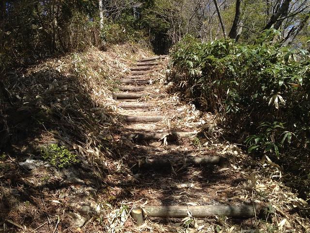 高賀山 山頂への丸太階段