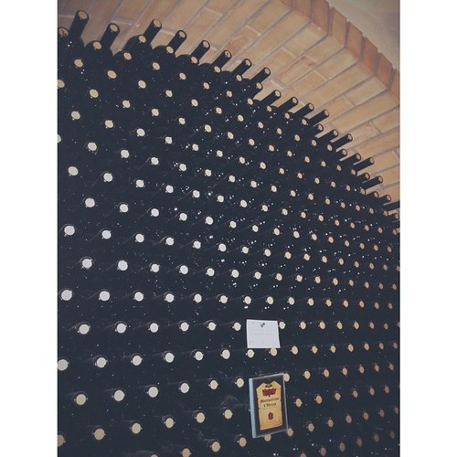 #pescara #nocciano #vino #igersPescara #igersitalia #latergram #italianwine #wine #cantineaperte #vscocam #vscogang #vscolover #vsco_hub #instawine #amazing #bellecose #Bosco