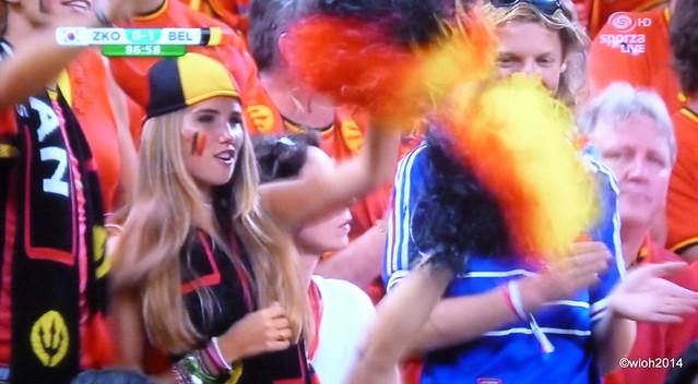 World Cup South Korea - Belgium 0 : 1