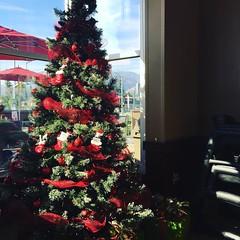 Christmas tree is beautiful here