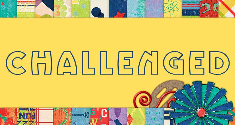 New: Challenged Bundle