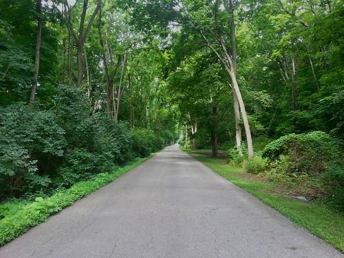 Division Road