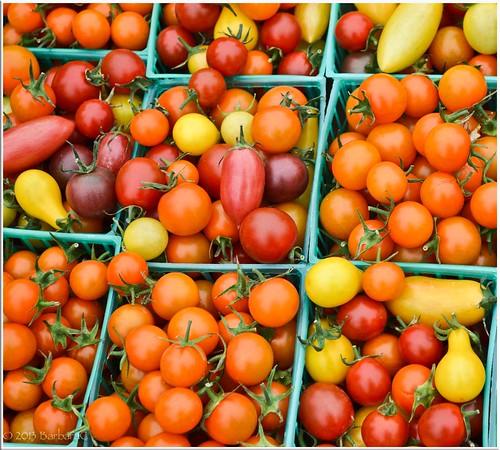 Tomato-Rainbow-