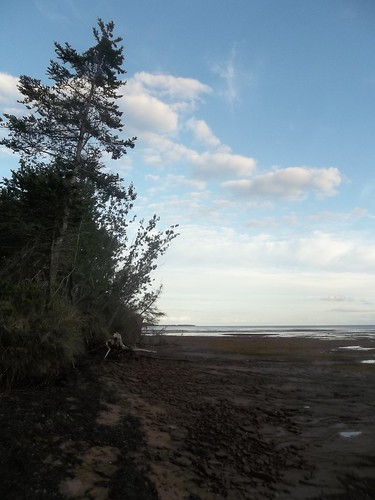 Low tide at Camp Buchan, Belfast, Prince Edward Island (3)