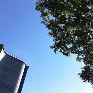 快晴だけど風は涼しいし過ごしやすい #sky #イマソラ